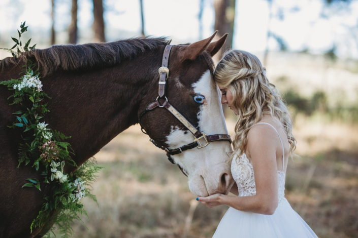 Spokane Wedding Photography Horse